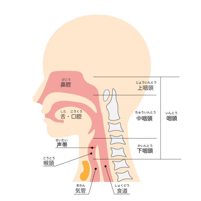 上 症状 炎 慢性 咽頭